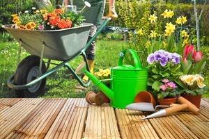 5-Manfaat-Berkebun-Bagi-Kesehatan